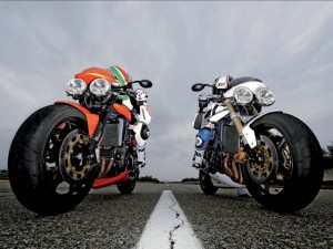 Confronto Triumph: Speed Triple Vs Street Triple